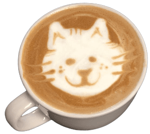 cafe_cat-removebg-preview